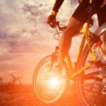 Rowery Unibike: testy i opinie użytkowników