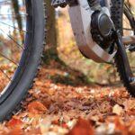 Rowery elektryczne: przegląd najlepszych modeli (HANSCRAFT, Ecobike, Lovelec)