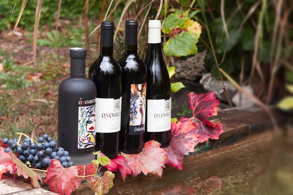 Odchudzanie Czerwone Wino Tuczy Czy Odchudza Rowery Jednośladpl
